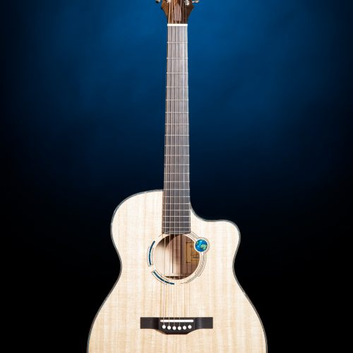 One of the many guitars from former President Carter's Legacy Collection.
