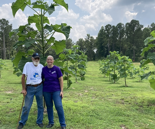 World Tree farmers