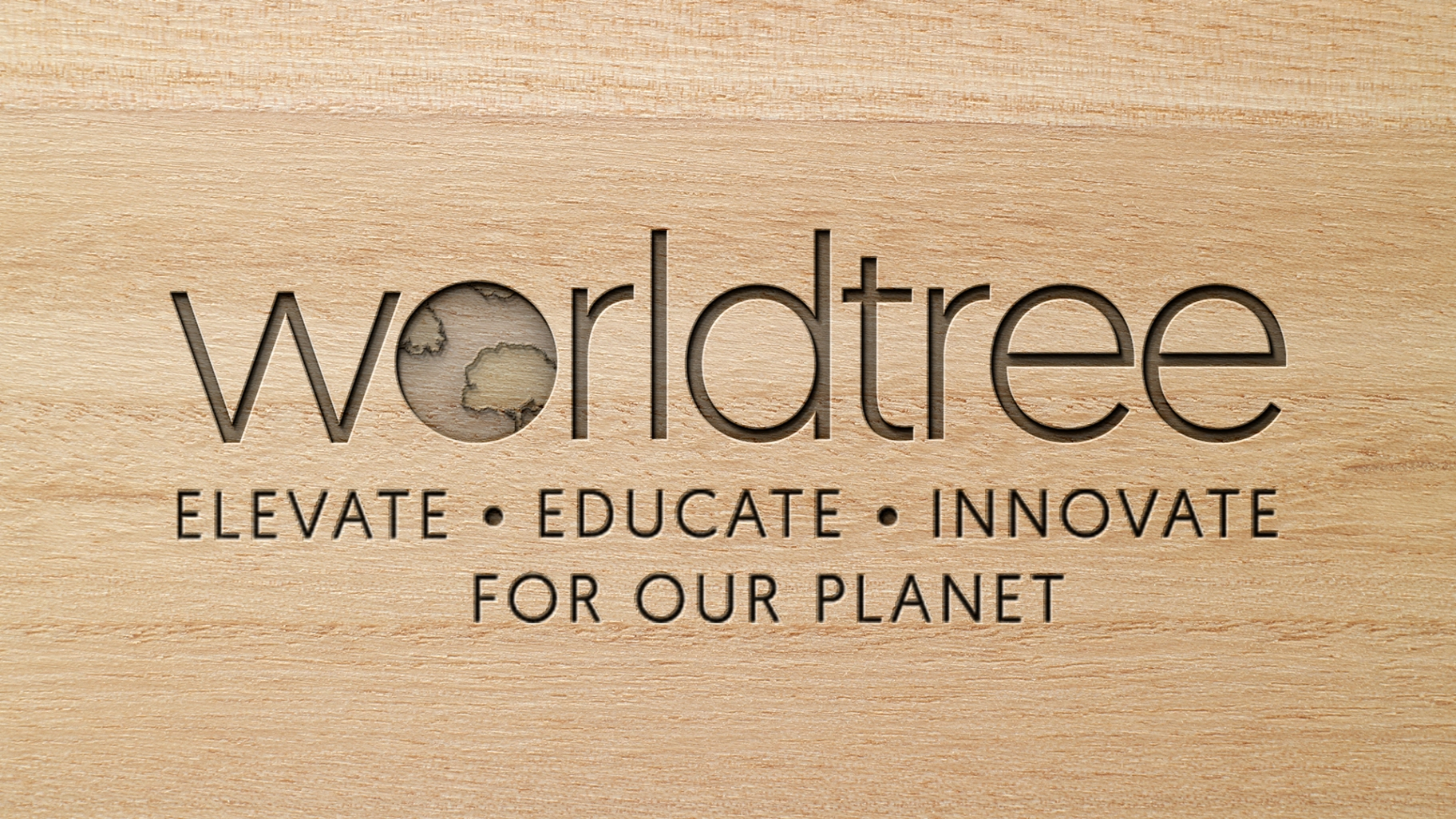 Sustainable timber investment that maximizes economic and environmental benefits