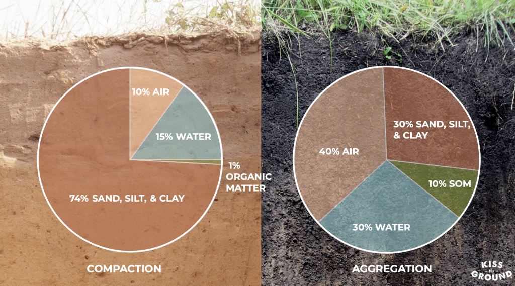 Visual showing the compaction and aggregation within the soil
