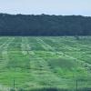 Raymer Texas Farm