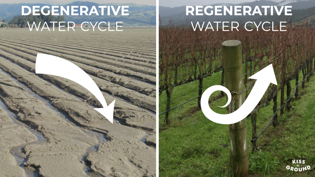 Visual showing the degenerative and regenerative water cycles