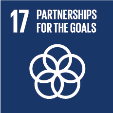 "A visual title that says, ""Partnerships for the Goals""."